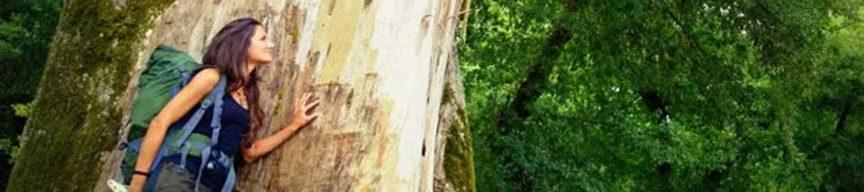 Lana lehnt bei einem Baum