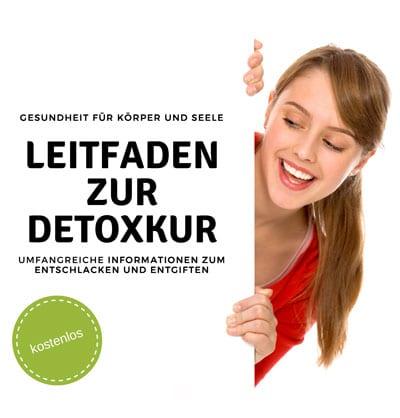 Cover Leitfaden zur Detoxkur