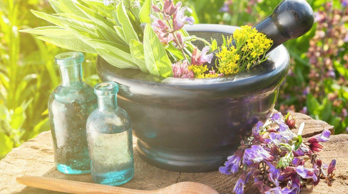 Ein Mörser mit Heilkräutern, Wasser und Blüten auf einem Tisch