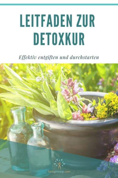 Cover des Leitfadens zur Detoxkur von Sandra und Matthias Exl