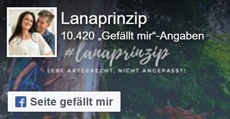 Facebook Widget Lanaprinzip