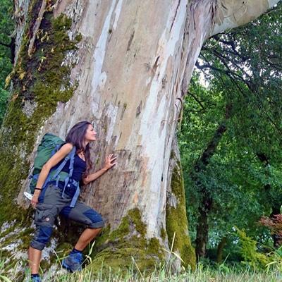 Sandra Exl bei einem sehr großen Baum in der Natur