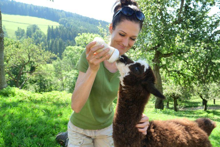 Sandra Exl mit einem Alpacca beim Urlaub am Bauernhof Schlinthof in Liebenfels, Österreich
